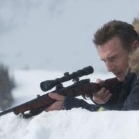 HIPOCRESÍA MORTAL - El actor irlandés Liam Neeson acaba de crear una gran controversia...
